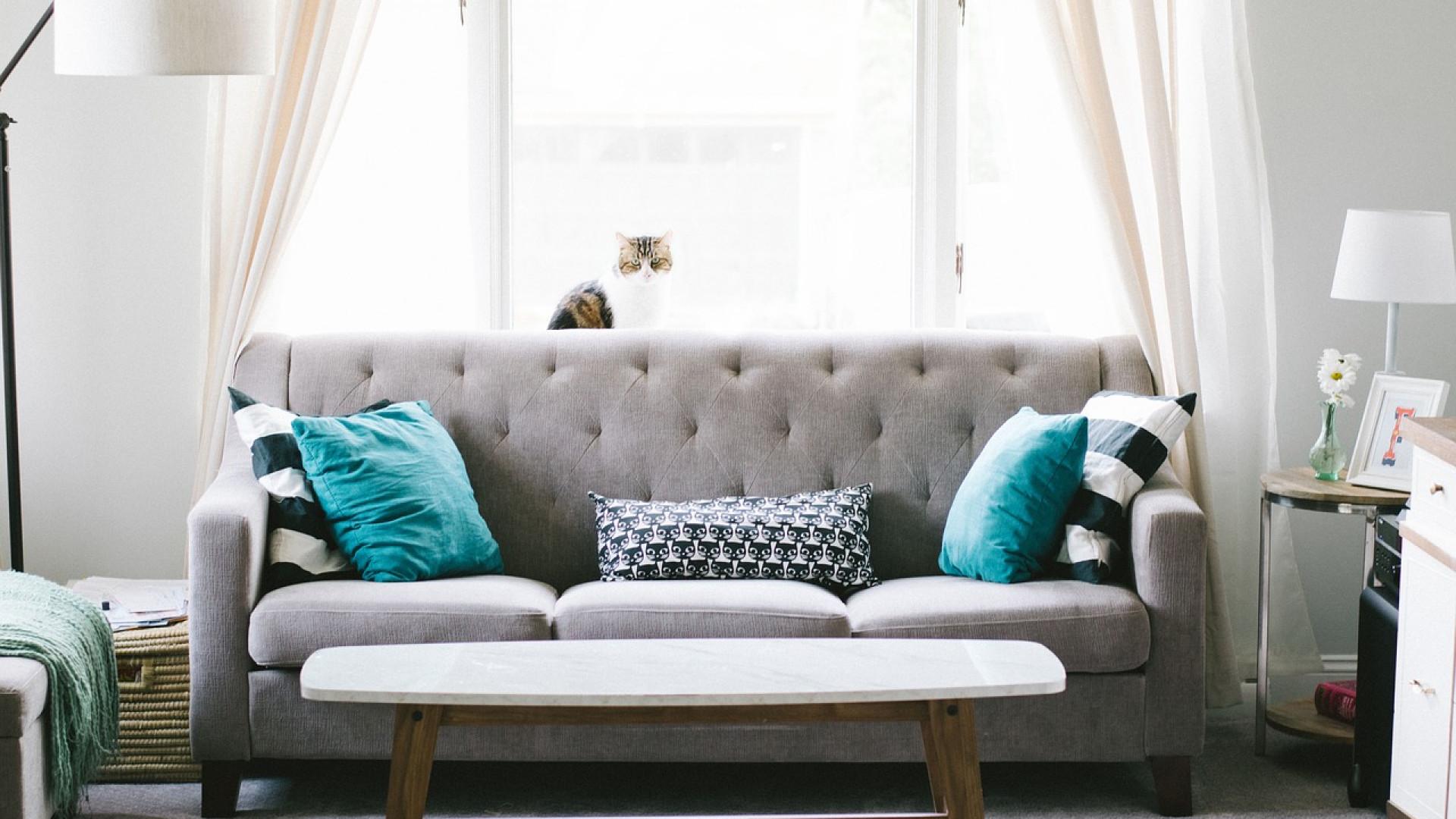 Pourquoi suivre des blogs sur la décoration de maison ?